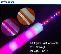 Good price www.sex com t8 led tube grow light with CE Rohs mini power ceiling hanging light led grow light