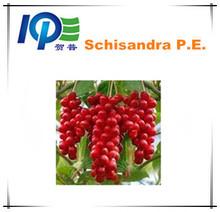 100% Natural SchisandraP.E./Magnoliavine Fruit P.E./Schisandra P.E.