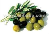 Cicada Table Olives