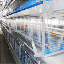 new design Multi-tier chicken cage for poultry farm