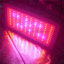 Newest Hydroponic Indoor Growing system Grow Led Lights 300w,Full Spectrum 300w Led Grow Lights Grow Panel Grow Lamps