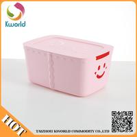 China professional manufacture new design plastic container