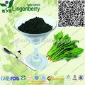Spinacia oleracea clorofilina/natural de sodio clorofilina de cobre