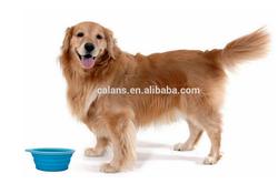 Dog Feeding Bowl Silicone Dog Pet Bowl Collapsible Dog Water Bowl