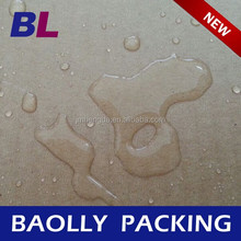 Stronger 20kg Wax Coated fish packaging box B-C-01