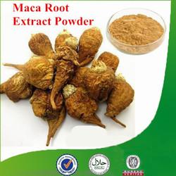 Aphrodisiac,100% organic maca powder, maca extract with low price