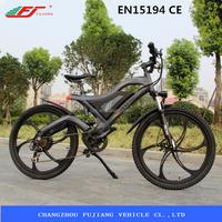 2015 hot sell electric off road bike CE EN15194 (FJTDE05)