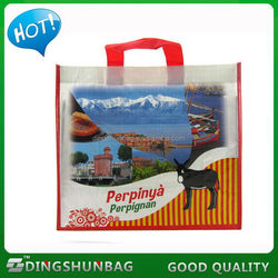 Alibaba china hot sale die cut handle pp woven shopping bag