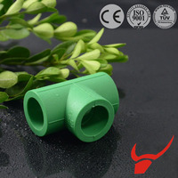 Pipe Fittings Manufacture Water Irrigation China Good Quality PPR Fittings Equal Tee with Different Color