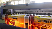 flex vinyl printing/vinyl photo printing