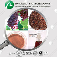 High Quality Orginic Factory supply 100% Natural Grape Seed Extract