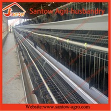 automatic poultry cage design for layer chicken farm