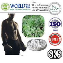 GMP Standard Saw Palmetto Extract/Saw Palmetto extract Powder 45% Fatty acids