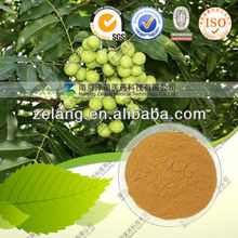 65%-75% Saponin ~100% Natural Soap nut Extract