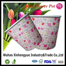 Disposable Plant Paper Tubs