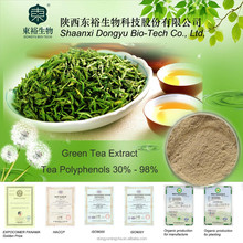 GMP Manufacture Supply Top Quality Green Tea Extract 98% tea polyphenols for capsule