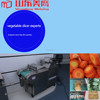 vegetable fruit cutter Fresh Fruits & Vegetables. ozonizer vegetable washers for indian in indonesi the first in the word