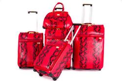 19''23''/27'' ergo luggage with two wheels + Lady Bag