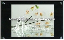 Lcd advertising display 20 inch advertising monitor 3G/WIFI/PC