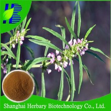 Professional Manufacture motherwort herb powder