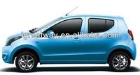 fashion economic small petrol car (1.0L)