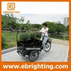 New design three wheeler price/3 wheel motorcycle/bakfiet cargo bike made in china coffee