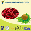 Free sample anxiety-proof TOP quality China Supplier Chinese Magnoliavine Fruit extract HPLC tested