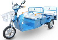 48v 500w electric tricycle for adults / China top quality / popular in Southeast Asain