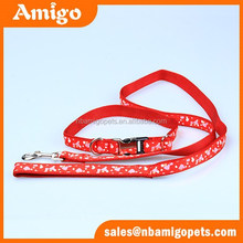 Amigo Pet AMCL263 nylon dog collar and leash