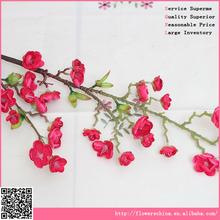 atractivo 2 solo tenedores de ciruelo en flor para la decoración