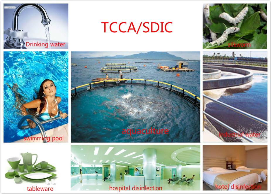Swimming Pool Chlorine Powder Tcca 90 Buy Chlorine Powder Product On
