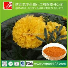 Manufacturer Supply Lutein (marigold flower extract)