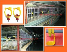 Breeding Chicken cage for birds (Design&Equipment)
