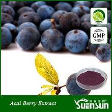 organic water soluble natural 4:1 10:1 acai berry extract