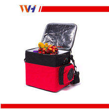 Portable outdoor holiday mini car refrigerator