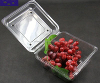 New design blister pack a4 size plastic tray fruit tray