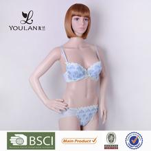 Japan Style Pretty Pattern Young Women Push Up Bra Penty Set Girls Womens Hot Bra Sex Images