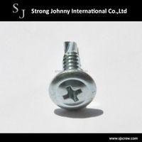 Taiwan cheap steel phillips round washer head zinc self drilling screw concrete