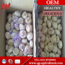 wholesale 4.5cm/5.0cm/5.5cm/6.0cm fresh white garlic from China