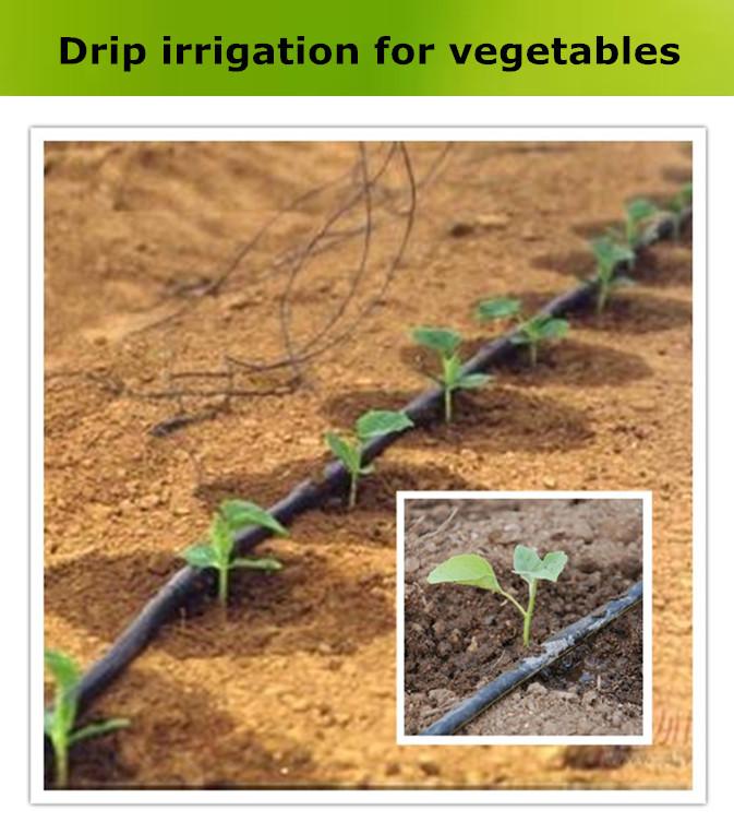 Nouveau mat riau plastique tuyau d 39 irrigation goutte goutte autres arrosage irrigation id - Irrigation goutte a goutte ...