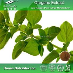Pure Oregano Leaf Extract,Oregano Herbal Extract 6:1 10:1