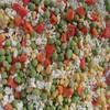 best frozen mixed vegetables(sweet corn, green pea, carrot, cauliflower)