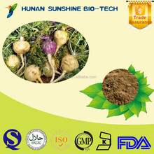 China Plant Extract Dark Brown Powder Ratio 10:1 Maca Extract