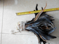 cheap natural color 8-10inches rooster feather