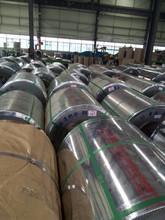 China PPGI 0.16-0.6mm 700-1250mm various color coated PPGI/PPGI steel coil cheap price