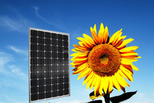 250w poly solar module high efficiency solar pane the lowest price solar panel pv solar panel