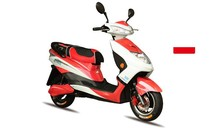 powerful electric racing motorcycle 800w (max 1500w)