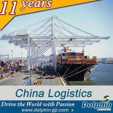 Best Ocean Shipping From Qingdao to North Africa/Freight Agency/Best Sea Freight Rates------Dolphin