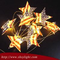 Newest High Performance Fruit Shaped Christmas Lights