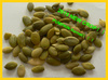 hot sale pumpkin seeds kernels from chinese supplier